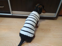 White with black stripe knitted dog sweater, striped dog jumper, knitted dog clothes sweater