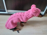 Pink dachshund suit sweater and hat, knitted dachshund clothes sweater and hat, winter dachshund suit sweater and hat