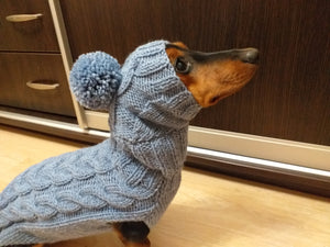 Gray dog costume sweater and hat, knitted dachshund clothes sweater and hat, winter dachshund suit sweater and hat