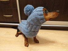 Load image into Gallery viewer, Gray dog costume sweater and hat, knitted dachshund clothes sweater and hat, winter dachshund suit sweater and hat