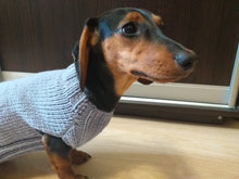 Load image into Gallery viewer, Jumper with rainbow paw for dog, knitted sweater with rainbow paw for dog, sweater with paw for dachshund