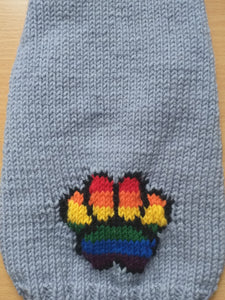 Jumper with rainbow paw for dog, knitted sweater with rainbow paw for dog, sweater with paw for dachshund