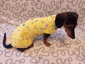 New exclusive collection of sweaters with flowers and butterflies for the miniature dachshund or small dog