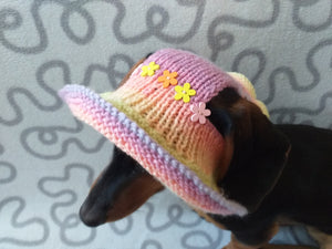 Summer hat for a dog with flowers, summer hat with flowers for a dachshund or small dog