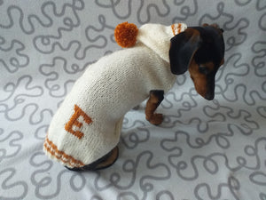 Dog initials hoodie sweater, dog name letter clothes, initials dog clothes, personalized monogram sweater