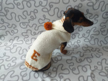 Load image into Gallery viewer, Dog initials hoodie sweater, dog name letter clothes, initials dog clothes, personalized monogram sweater