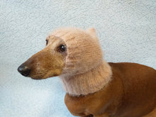 Load image into Gallery viewer, Angora hat warm winter for dog - dachshundknit