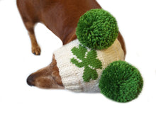 Load image into Gallery viewer, Hat with clover for dog with two pompons, hat clover for dachshund, St. Patrick's Day hat with clover for dog