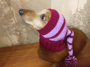 Christmas hat for dog, Santa hat for dog, hat for dog, hat for small dog, hat for dachshund, doxie clothes, doxie hat - dachshundknit