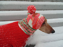 Load image into Gallery viewer, Christmas knitted hat dog, dog hat, winter hat, dachshund hat - dachshundknit