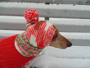 Christmas knitted hat dog, dog hat, winter hat, dachshund hat - dachshundknit