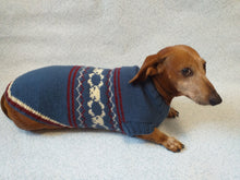 Load image into Gallery viewer, Clothing dog skull with bones halloween costume - dachshundknit
