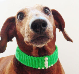 Collar for dog or cat,gift collar for dog - dachshundknit