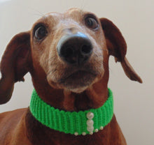 Load image into Gallery viewer, Collar for dog or cat,gift collar for dog - dachshundknit