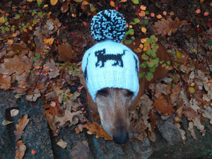 Dachshund hat with black cats knitted for dog - dachshundknit