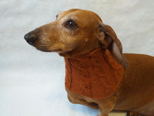 Load image into Gallery viewer, Dachshund or small dog scarf snood - dachshundknit
