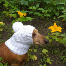 Load image into Gallery viewer, Dog clothes white hat with pompom - dachshundknit
