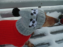 Load image into Gallery viewer, Handmade knitted panda hat for dachshund dog - dachshundknit