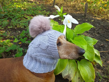 Load image into Gallery viewer, Hat for small dog with big pompom rabbit - dachshundknit