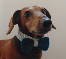 Load image into Gallery viewer, Knitted collar bow for dog cat,collar bow for dog cat, knitted collar for dog, collar for cat, decorative collar, gift collar for dog - dachshundknit