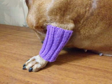 Knitted leggings for small dogs set on the front paws - dachshundknit