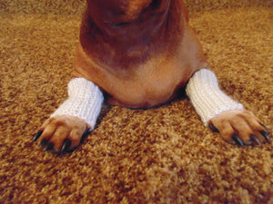 Knitted leggings for small dogs set on the front paws, dog leggings, dog wrist warmers, mini dachshund leggings, small dog leggings - dachshundknit