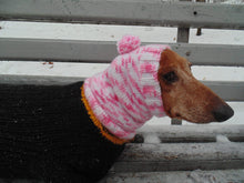 Load image into Gallery viewer, Knitted pink winter snud for dogs with two pom-poms - dachshundknit