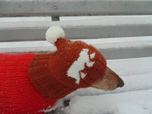 Load image into Gallery viewer, Knitted winter hat with bears for dachshund dogs - dachshundknit