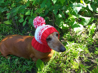 Red hat with hearts clothes for small dog - dachshundknit