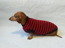 Load image into Gallery viewer, Red with black stripes dog knitted sweater, clothes for dachshund, sweater dog, clothes for dog, sweater for small dogs, dachshund sweater - dachshundknit