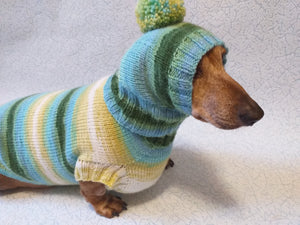 Set sweater and hat for dogs, sweater and hat for dachshunds, clothes for dogs, clothes for dachshunds - dachshundknit