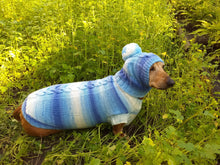 Load image into Gallery viewer, Winter set sweater and hat for dogs dachshund - dachshundknit