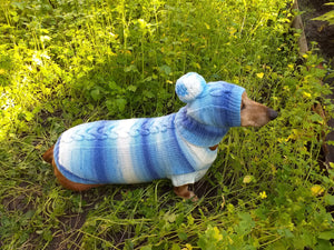 Winter set sweater and hat for dogs dachshund - dachshundknit