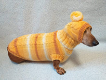 Load image into Gallery viewer, Winter warm sweater set and hat for dog, hat for dachshund - dachshundknit