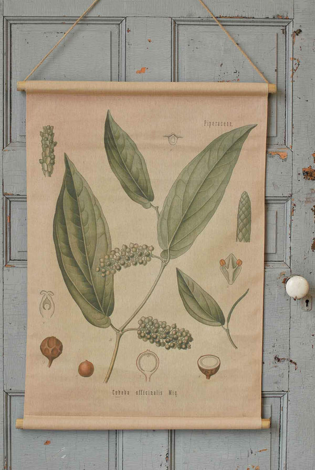 Botanical Canvas Wall Art 2