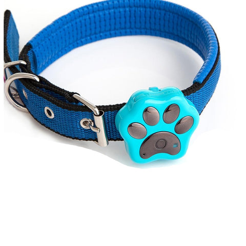 Collier Gps Chat Petit