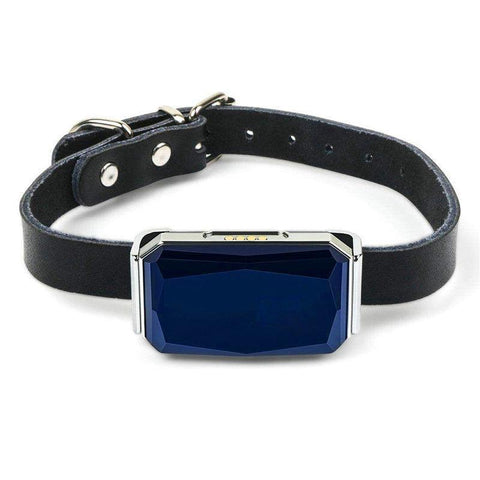 Collier Gps Chat Anti Fugue