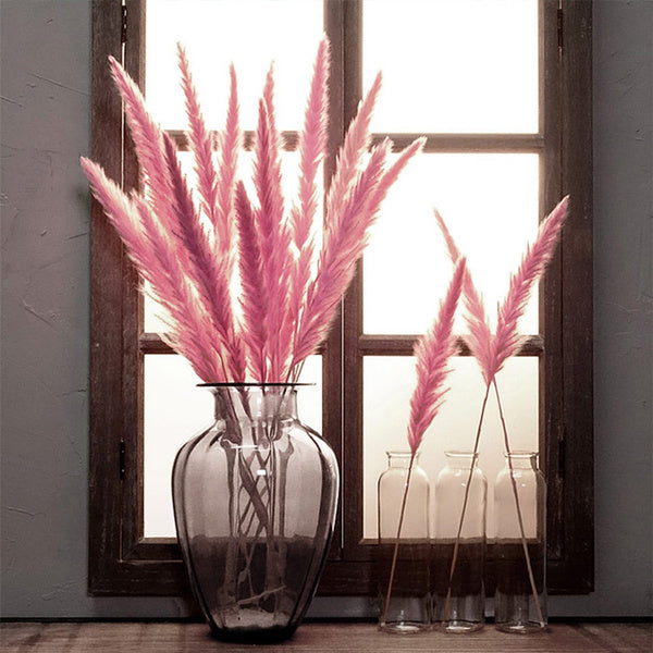 The Yasmine - Pink Dried Pampas Grass