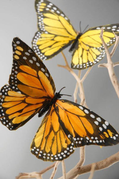 Decorative Monarch Butterflies | 6 Pk