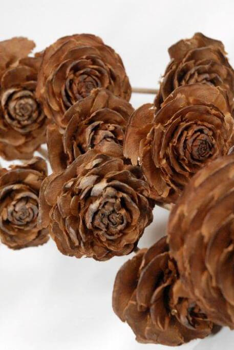 10 cedar wood roses floral picks 16