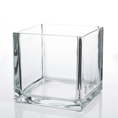 Richland Square Glass Cube Vase 6""