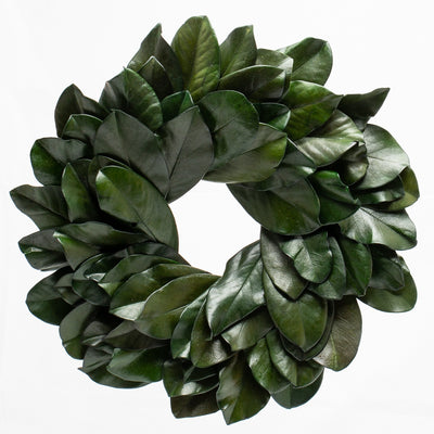"Richland Preserved Magnolia Wreath 17"" Set of 6"