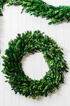 Richland Preserved Boxwood Wreath 17""