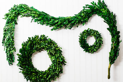 "Richland Preserved Boxwood Garland 70"" Set of 4"