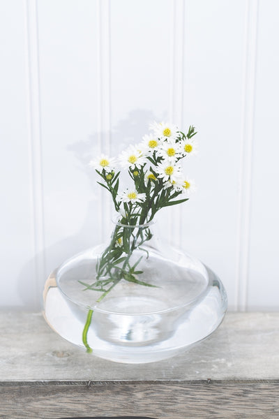 Richland Juel Vase Clear Set of 6
