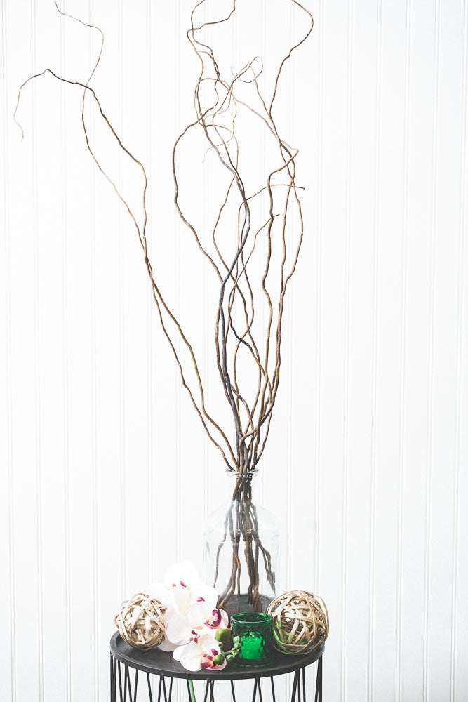 Natural Curly Willow Tree Branches 26-30in