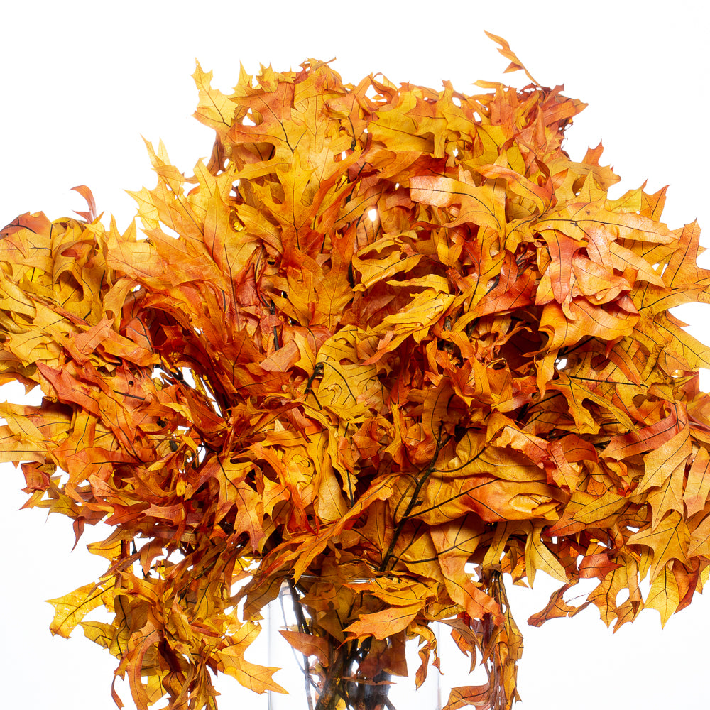 Preserved Golden Orange Autumn Oak Branches