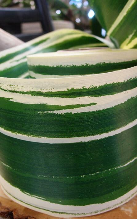 variegated aspidistra leaf 4 ribbon green cream 50 yards