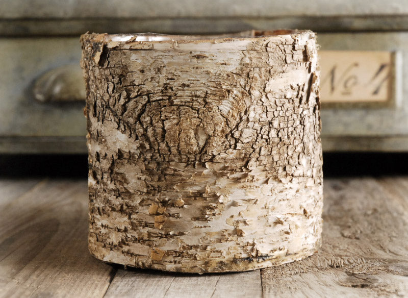 "Birch Bark Covered 6"" Planters Pot w/Liner"