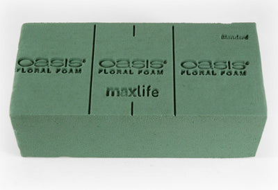Floral Wet Foam Bricks | Pack of 6